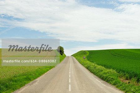 Rural road between crop fields