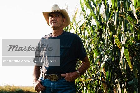 Farmer standing in corn field