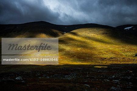 Sunlit rolling landscape