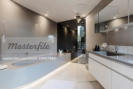 Modern luxury home showcase interior bathroom