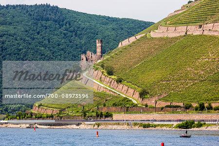 Ehrenfels Castle Ruin along the Rhine between Rudesheim and Koblenz, Germany