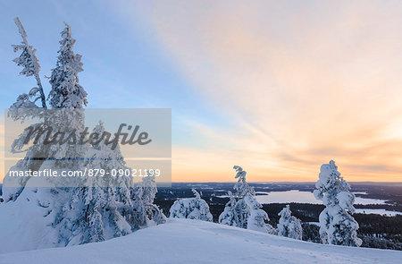 The sun frames the snowy landscape and woods in the cold arctic winter Ruka Kuusamo Ostrobothnia region Lapland Finland Europe