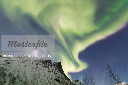 Northern lights and stars on the snowy peaks in the polar arctic night Bergsbotn Senja Tromsø Norway Europe