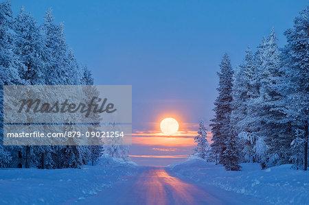 Lunar sunrise on the snowy forest, Kiruna, Norrbotten County, Lapland, Sweden
