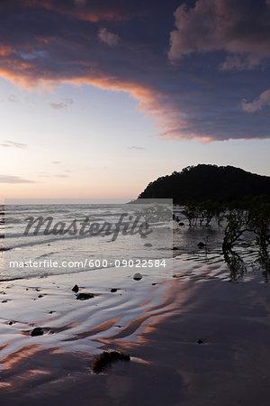 Silhouette of coastal shoreline and beach at Cape Tribulation at sunrise in Daintree National Park, Australia