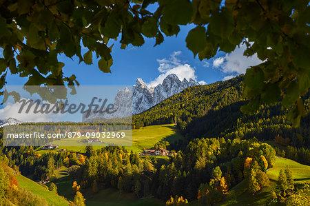 Leaves frames the Funes valley, Odle dolomites, South Tyrol region, Trentino Alto Adige, Bolzano province, Italy, Europe
