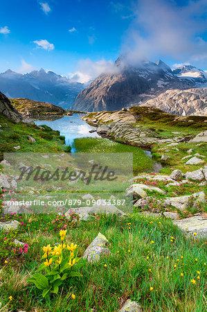 Val Genova, Adamello-Brenta natural park, Trentino-Alto Adige, Italy. The Three Lobbie mountains and Pope Johannes Paul II peak views from the Mandron refuge