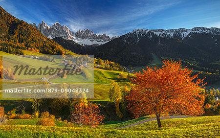 Autumn at the village of Santa Magdalena, Funes valley, Odle dolomites, South Tyrol region, Trentino Alto Adige, Bolzano province, Italy, Europe