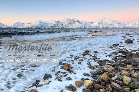 The waves breaking on a beach overlooking the Lyngen Alps during sunrise. Hammarvika, Lyngenfjord, Lyngen Alps, Troms, Norway, Lapland, Europe.