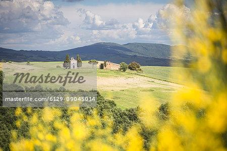 Vitaleta chapel among Val d'Orcia hills, Province of Siena, Tuscany, Italy