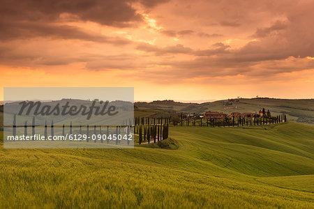 Asciano,Tuscany, Italy