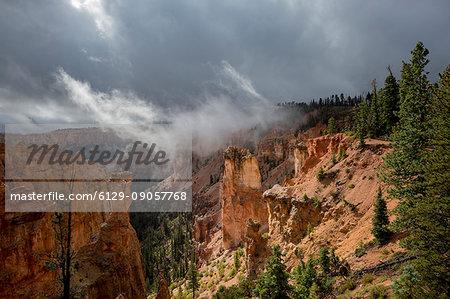 Black Birch Canyon. Bryce Canyon National Park, Garfield County, Utah, USA.