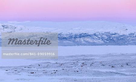 View of Abisko houses, on the banks of Tornetrask Lake, Abisko, Abisko National Park, Norbottens Ian, Sweden, Scandinavia, Europe
