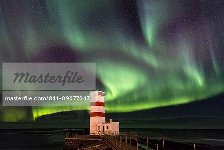 Spectacular display of the Aurora Borealis (Northern Lights) at Gardur, on the Reykjanes Peninsula, Iceland, Polar Regions