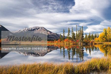 Autumn foliage and mountain lake, Jasper National Park, UNESCO World Heritage Site, Canadian Rockies, Alberta, Canada, North America