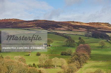 Derwent Valley, Peak District National Park, Derbyshire, England, United Kingdom, Europe