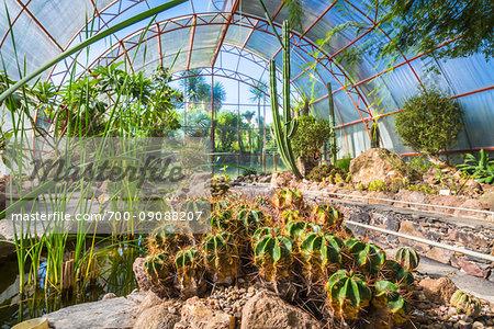 The Botanic Gardens (Charco Del Ingenio) near San Miguel de Allende, Mexico