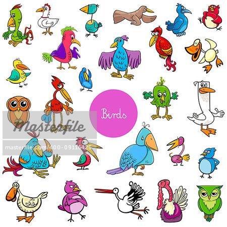 Cartoon Illustration of Birds Animal Characters Big Collection