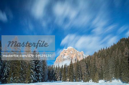 Tofana di Rozes and the forest of Alpe Peziè, Cortina d'Ampezzo, Belluno, Veneto, Italy