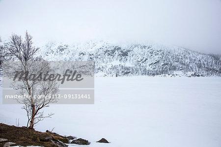 Tranquil, snow covered landscape, Kanstad, Hinnoya, Norway