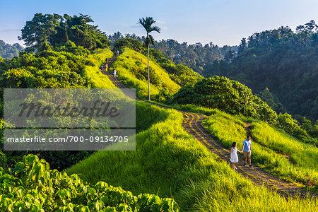 People walking along the path on the scenic Campuhan Ridge Walk near Campuhan in Ubud District in Gianyar, Bali, Indonesia