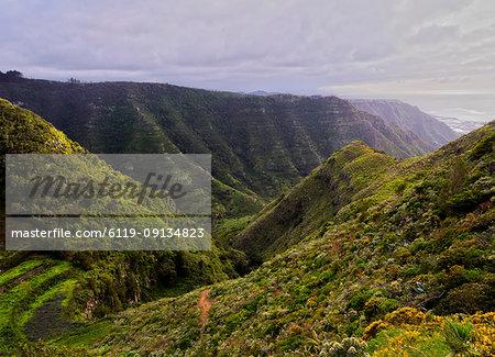 Barranco La Goleta, gorge, trail from Cruz del Carmen to Bajamar, Anaga Rural Park, Tenerife Island, Canary Islands, Spain, Atlantic, Europe