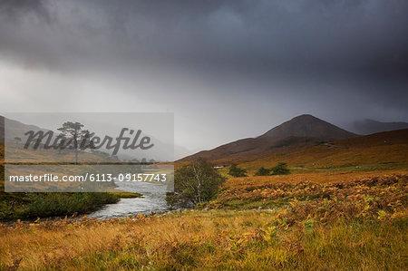 Tranquil landscape with stream, Glen Strathfarrar, Scotland