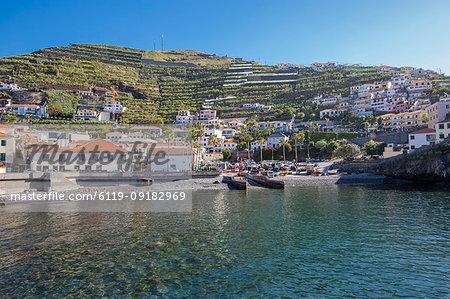 View of colourful houses overlooking harbour in Camara de Lobos, Madeira, Portugal, Atlantic, Europe