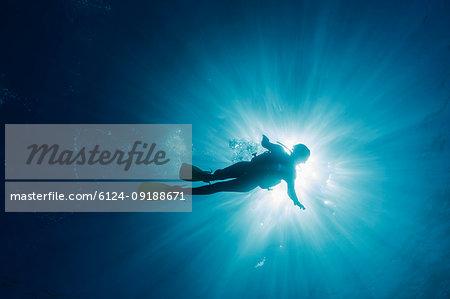 Sun shining behind woman scuba diving underwater, Maldives, Indian Ocean