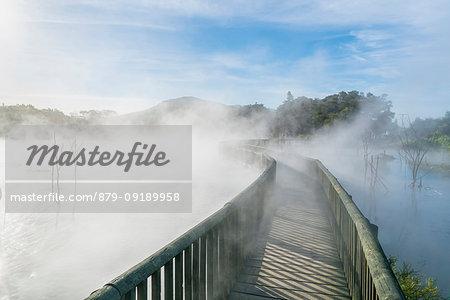 Boardwalk over a hot sulphurous pool. Kuirau Park, Rotorua, Bay of Plenty region, North Island, New Zealand.