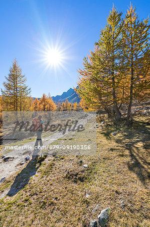 A girl is walking in the Alpe Veglia and Alpe Devero Natural Park in autumn season (Buscagna Valley, Alpe Devero, Baceno, Verbano Cusio Ossola province, Piedmont, Italy, Europe) (MR)