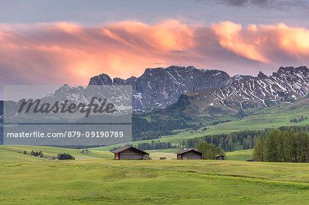 Alpe di Siusi/Seiser Alm, Dolomites, South Tyrol, Italy. Dusk on the Alpe di Siusi/Seiser Alm with the peaks of Catinaccio