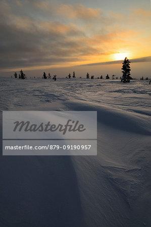 Sunset at Pallas - Yllästunturi national park, Muonio, Lapland, Finland, Europe.