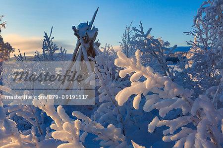 Typical frozen Sami tent near Kilpisjärvi, Lapland, Finland, Europe