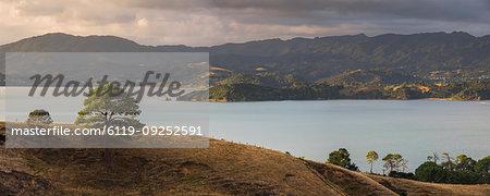 Countryside at Coromandel Town, Coromandel Peninsula, North Island, New Zealand, Pacific