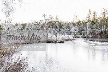 Frozen Lilla Skiren lake by forest in Ostergotland, Sweden