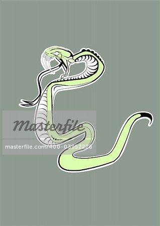 Vector illustration. Green  Snake