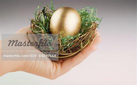 Golden egg in birds nest held by human hand