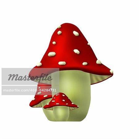 Flora - mushroom
