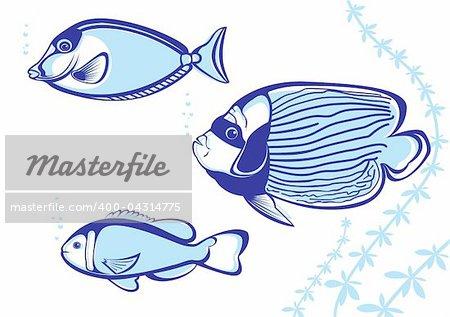 Tropical Fish. Vector illustration on white background for design