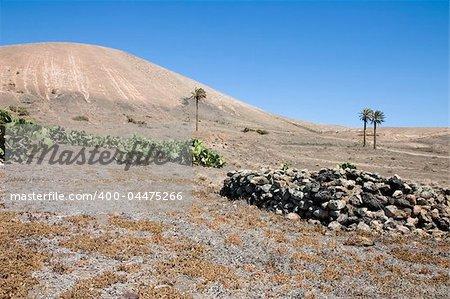 Arid landscape in Lanzarote, Canary Islands, Spain
