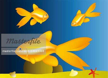 life under water - nice aquarium with golden fish