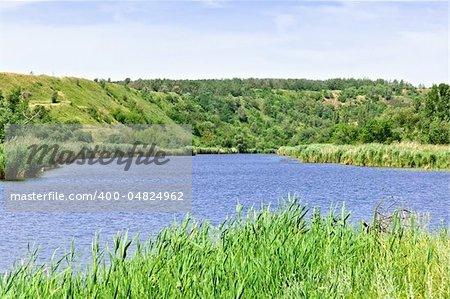 Summer rural landscape: lake, trees and blue sky