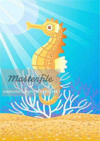 vector illustration of beautiful seahorse