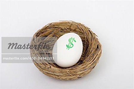 retirement nest egg dollars