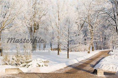 Footway in snowy park at Jelgava palace, Latvia