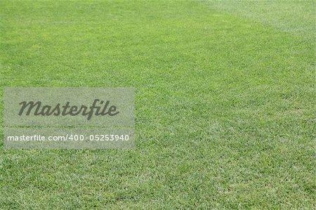 The grass of Camp Nou, Barcelona, Spain