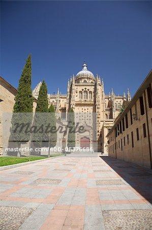 view of Salamanca city in Castilla Spain Europe
