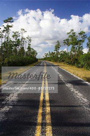Main road through scenic Everglades National Park, Florida