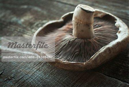 Large fresh shitake mushroom on wood planks